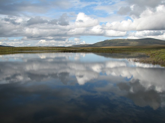 Moose Lake, Dempster Highway, Yukon